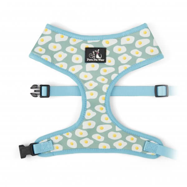 Sunny Side Up Harness 1