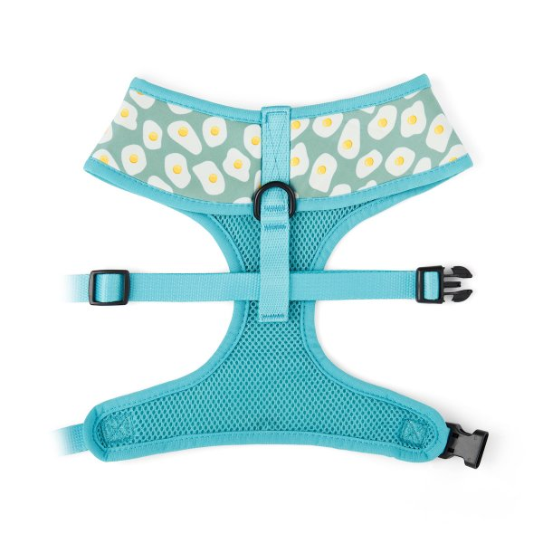 Sunny Side Up Harness 2