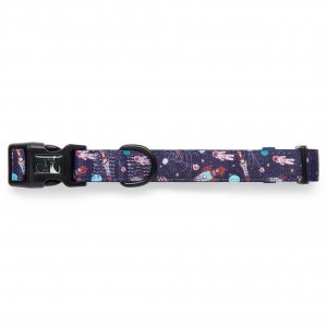 Midnight Madness Collar