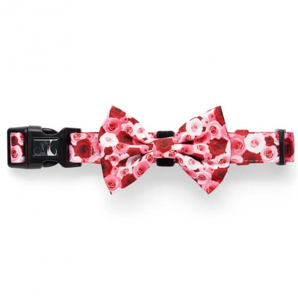Feeling Rosé Bow-Tie 2