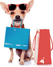 Dog with shopping bag