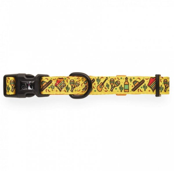 Dog Collar ~ No Way Jose 1