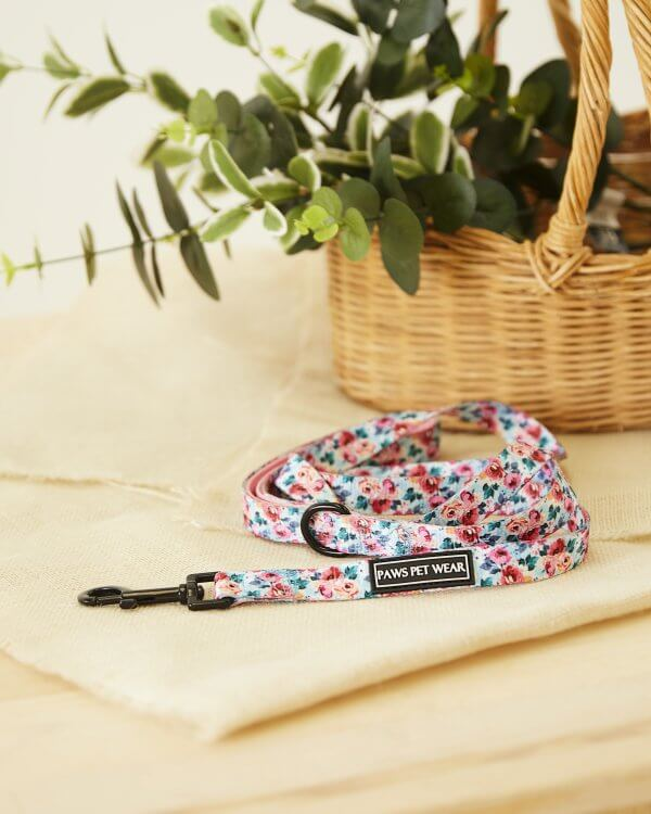 Dog Leash ~ Sweet Blossom 2